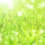 陽光イメージ画像