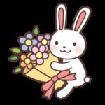 花束ウサギ